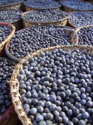 pure acai_berries_DETOX_3